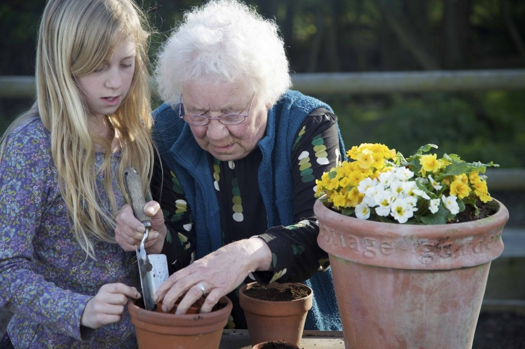Older woman and her granddaughter gardening