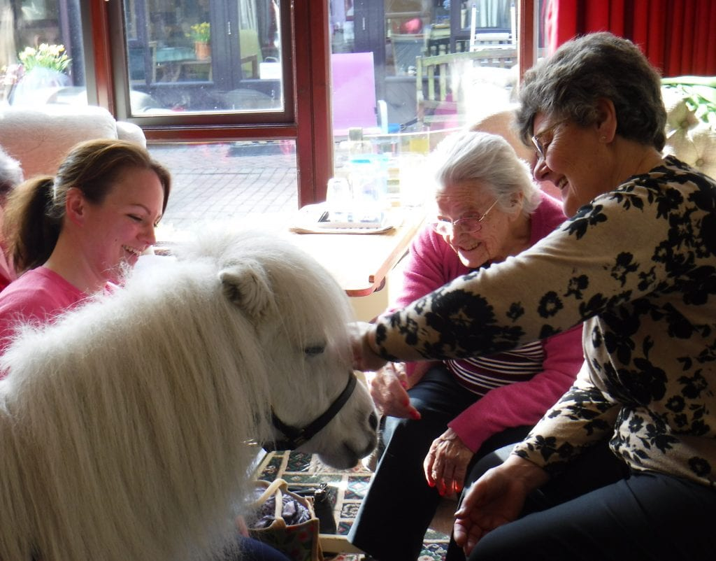 Residents and a member of staff at New Copford Place with a miniature pony