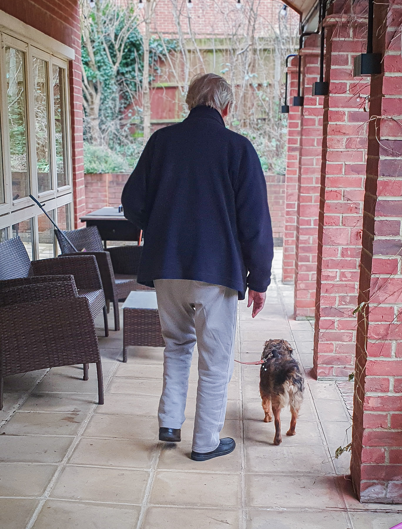 Older gentleman walking Thomas the rescue dog outside