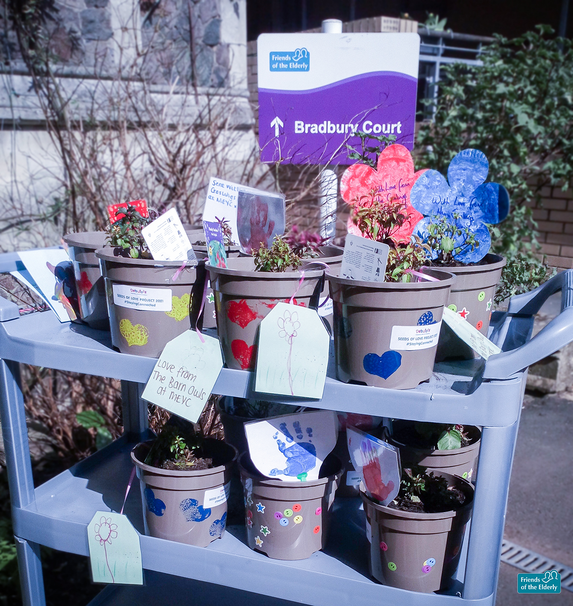 The plants donated to our Malvern care home